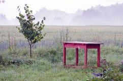 Alte rote Tabelle und Morgennebel im Bauernhof arbeiten im Garten Lizenzfreies Stockfoto