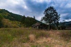 Alte Ruinen des hölzernen Hauses Stockfotografie