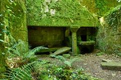Alte Ruinen einer galizischen Küche nannten Lareira Lizenzfreie Stockfotografie