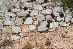 Alte Ruinen einer Steinwand Stockfotografie