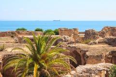 Alte Ruinen von Karthago das Mittelmeer, Tunesien übersehend lizenzfreies stockfoto