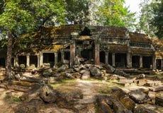 Alte Ruinen von Tempel Ta Prohm, Angkor, Kambodscha lizenzfreie stockfotos
