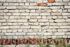 Alte ruinierte Weiß- und Backsteinwand Lizenzfreie Stockbilder