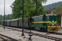 Alte rumänische sich fortbewegende Feldbahn nannte Sargan acht Lizenzfreie Stockfotos