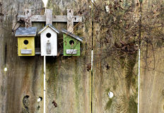 Alte rustikale Birdhouses auf Zaun Lizenzfreie Stockbilder