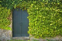 Alte rustikale Tür Lizenzfreies Stockbild