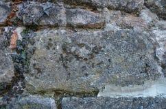 Alte Sandsteinwand bedeckt mit Efeu stockbilder