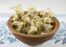 Alte Schüssel mit Blumenkastanien Stockfoto