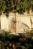 Alte Scheunentür überwältigt mit Anlagen Stockbild