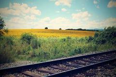 Alte Schienen in der Landschaft Stockbild