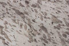 Alte Schlamm-bedeckte Betonmauerbeschaffenheit, Hintergrund Stockfotos