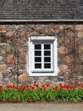 Alte Schlossmauer und Fenster, Litauen Stockfotos