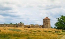 Alte Schlossruinen im grünen Gras Lizenzfreie Stockfotos