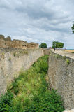 Alte Schlossruinen im grünen Gras Lizenzfreie Abbildung