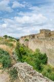 Alte Schlossruinen im grünen Gras Vektor Abbildung
