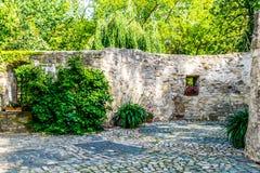 Alte Schlosswand verziert mit Anlagen stockfotos