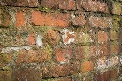Alte schmutzige Backsteinmauer Stockfoto