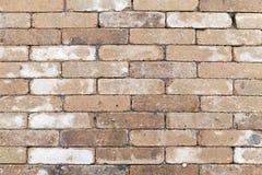 Alte schmutzige gelbe weiße Backsteinmauerbeschaffenheit Stockbilder