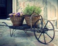 Alte Schubkarre mit Körben von Blumen Lizenzfreies Stockfoto