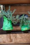 Alte Schuhe Lizenzfreie Stockfotografie
