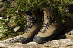 Alte Schuhe in einem Holz Stockfotografie