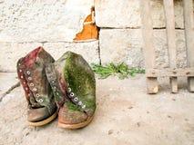 Alte Schuhe mit Moos Stockfoto