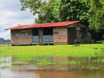 alte Schule Caño-Schwarze-im wilden Leben-Schutz Costa Rica Lizenzfreies Stockfoto