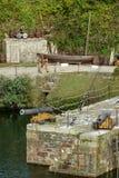 Alte Segeln-Loggerkanone und -fässer im historischen Hafen von Charlestown Lizenzfreies Stockbild