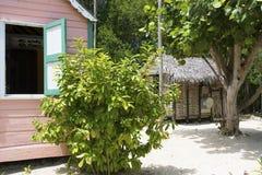 Alte Siedler setzen Haus auf Grand Cayman-Insel auf den Strand stockfotos