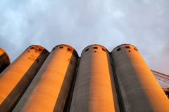 Alte Silos der Kornendlagerung, sehr rustikal/landwirtschaftliche Silos in Belgrad, Serbien Stockbild