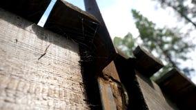Alte Spinnennetze in verlassenem Haus Das Spinnennetz unter dem Dach Spinnennetze unter dem Dach stock footage