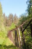 Alte Staatsgrenze im Wald Lizenzfreies Stockfoto