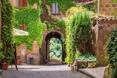 Alte Stadt überwältigt mit Efeu in Toskana stockbild