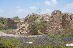 Alte Stadt Caesareas, Israel Stockbilder