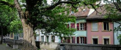 Alte Stadt-Häuser und Baum Stockfoto