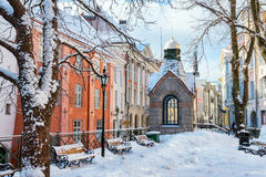 Alte Stadt Tallinn, Estland Lizenzfreies Stockfoto