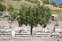 Alte Stadt von Ephesus. Türkei Lizenzfreies Stockbild