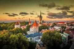 Alte Stadt von Tallinn Estland Stockbild