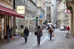 Alte Stadt Wiens Stockbild