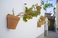 Alte Stadtblumentöpfe, Badajoz, Spanien Stockfoto