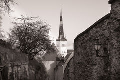 Alte Stadtlandschaft Tallinns, Estland Lizenzfreies Stockfoto