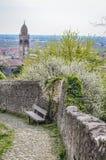 Alte Stein-Straße in der Italiener ummauerten Stadt von Soave mit Steinbank Stockfotografie