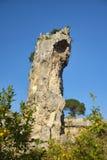 Alte Steinbrüche, archäologischer Park, Siracusa Stockfotos