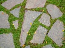 Alte Steinpflasterung mit grünem Gras Lizenzfreies Stockfoto