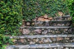 Alte Steinschritte mit dem Grünwachsen Stockbilder