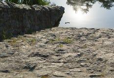 Alte Steintreppe im Wasser Stockfoto