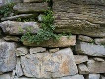 Alte Steinwand Lizenzfreie Stockfotos