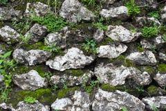 Alte Steinwand mit Blättern und Moos Stockfoto
