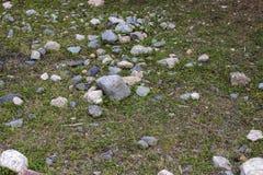 Alte Steinwand mit grüner Efeubeschaffenheit stockfoto