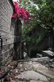 Alte Straße, blauer Ziegelstein und rote Blumen Lizenzfreie Stockfotos